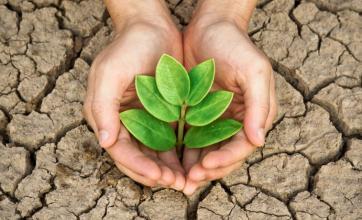 Plano de Controle e Mitigação de Impactos Ambientais