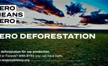 Além do Desmatamento