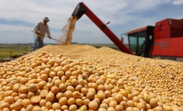Rastreamento e Certificações Agropecuárias ficam mais importantes com a pandemia