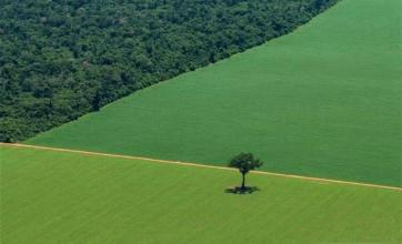 Europa ameaça investimentos no BR em dia que país lança plano para agricultura sustentável