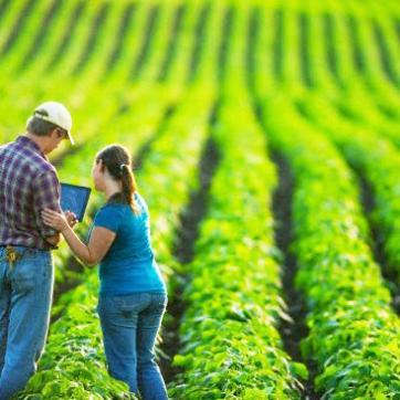 Receita agronômica pode ser assinada eletronicamente